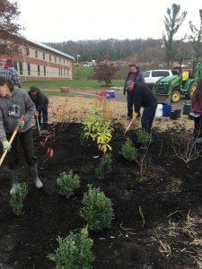 Group planting a rain garden