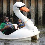 Children pedal boating